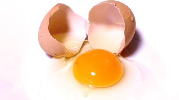 egg-2147169_1920